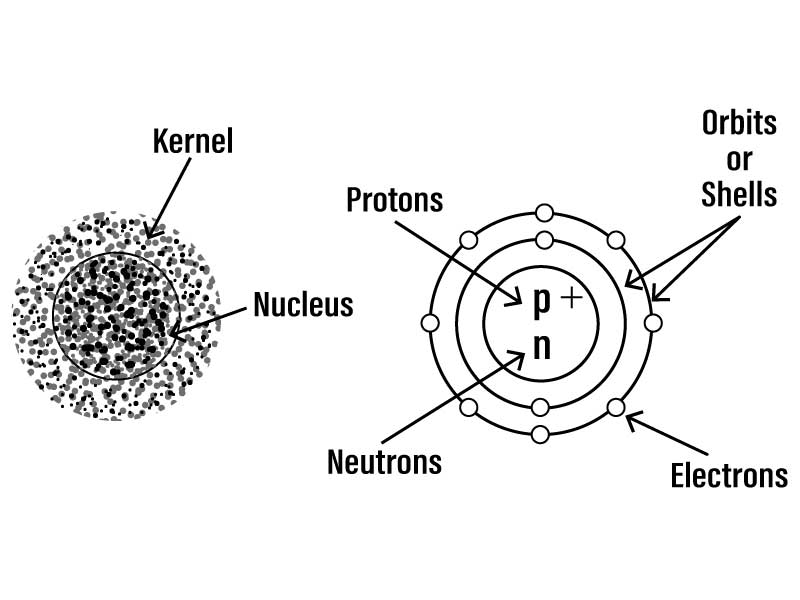 Q5 Draw a neat labelled diagram representing an atom Name th | LIDOLido Learning